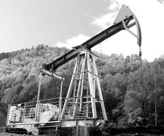 Погорел на нефти