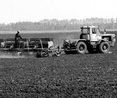 Ферма уходит с молотка