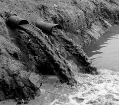 Волга требует защиты