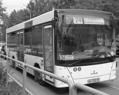Еще недавно по маршруту №24 курсировали неудобные «газели»