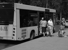 Муниципальный транспорт востребован
