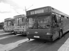 Смена поколений автобусов требует депутатской поддержки.