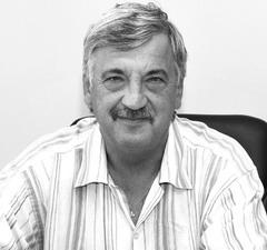 Владимир Стрыгин: