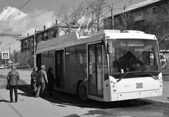 Ждут троллейбус