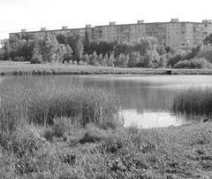 За время правления Виктора Тархова Самара может лишиться уникального парка